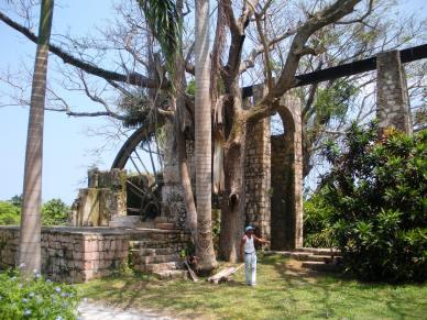 Plantation Ruins in Jamaica by marktravel
