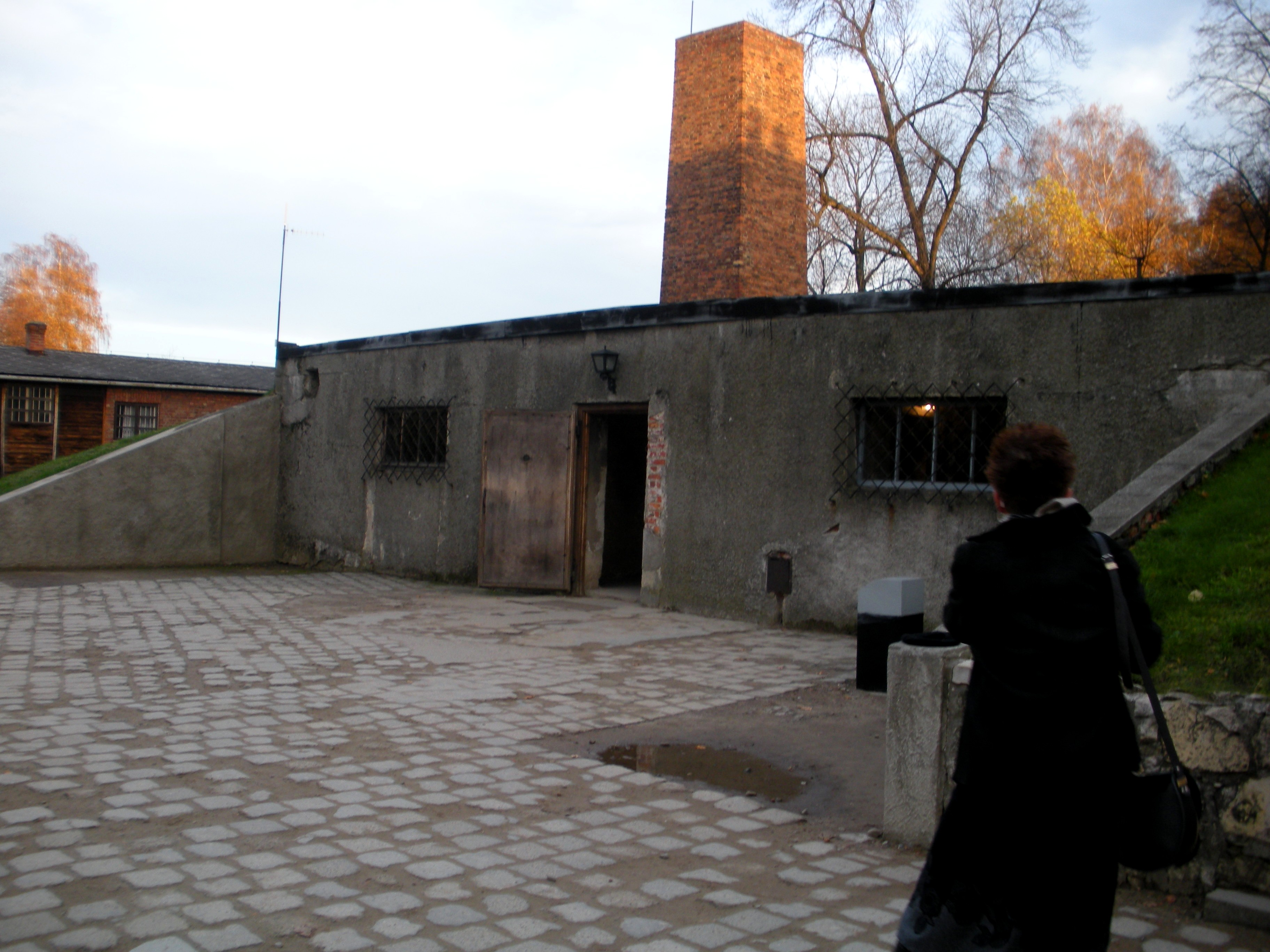 Auschwitz The Gas Chamber And Crematorium 1 By