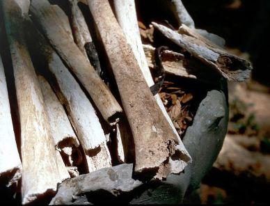 Killing Fields of Cambodia - bones