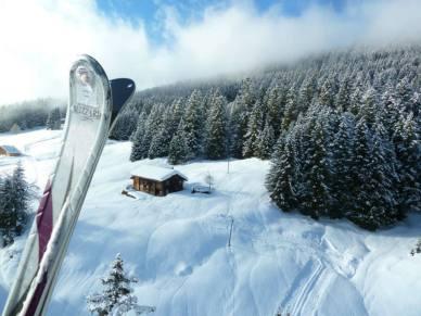Inghams Ski Winner #2
