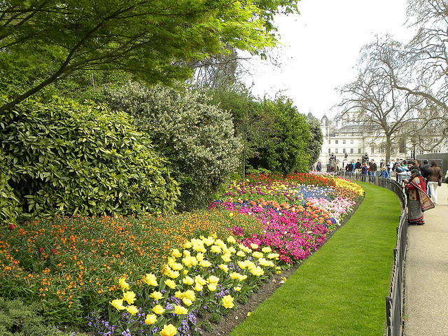 View of St. James Park, London