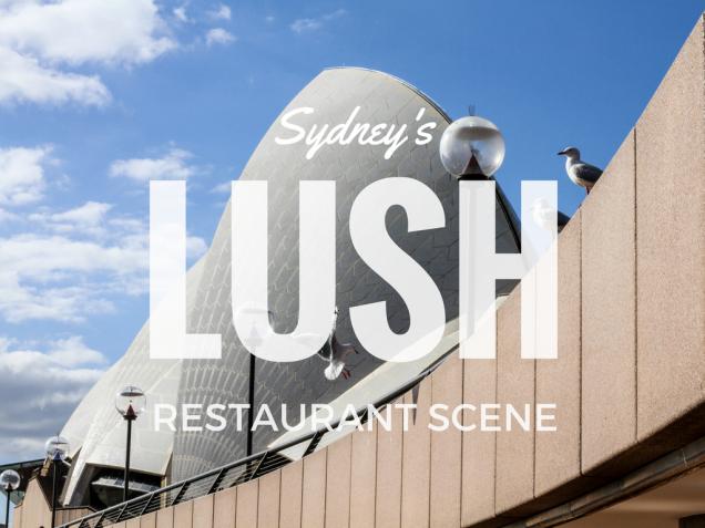 sydneyslushrestaurantscene