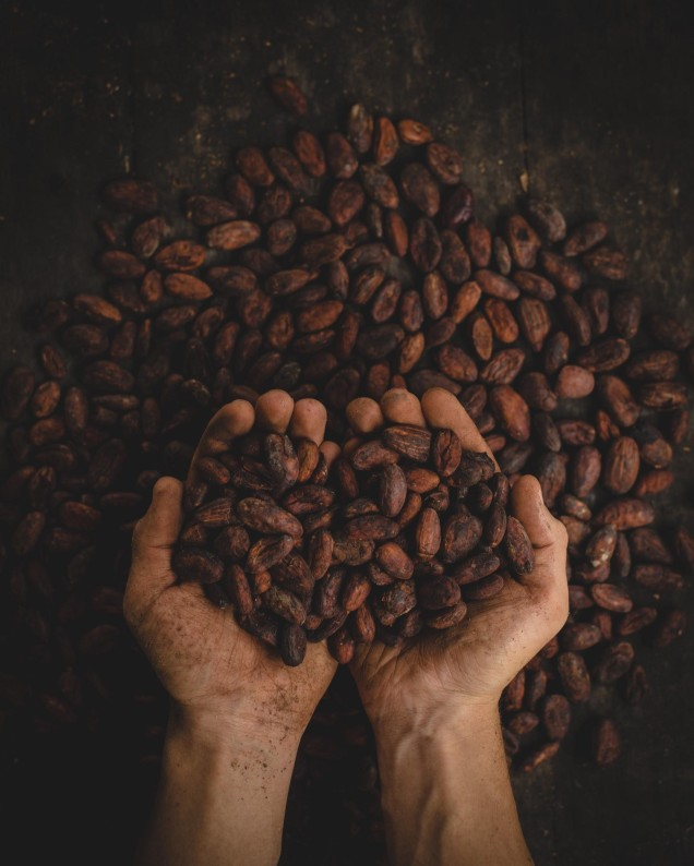 Coffee beans about to be roasted