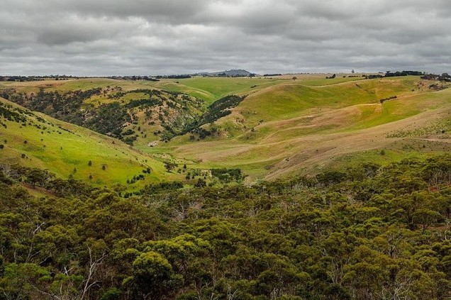 The Best Hiking Trails in Victoria, Australia