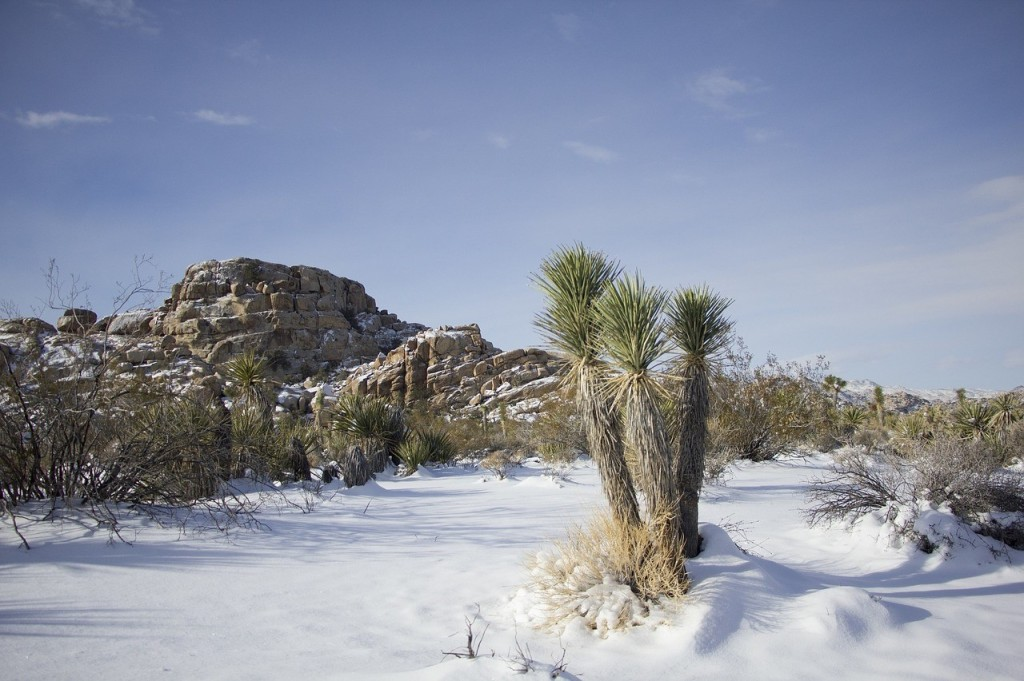 A little snow in the California desert