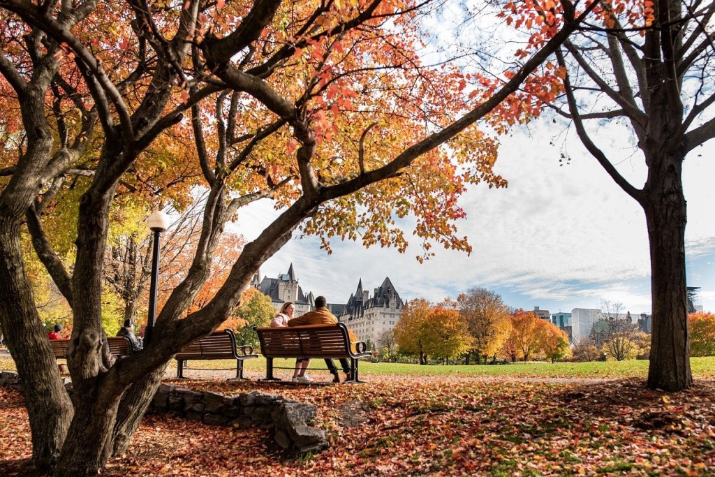 Couple sitting on a bench during Fall in the park in Ottawa, Canada