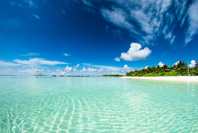 Clear water and blue skies with a coast of one of the Maldives islands.